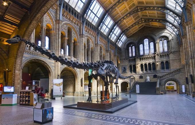 Museum Explorer – GPS Treasure Hunt