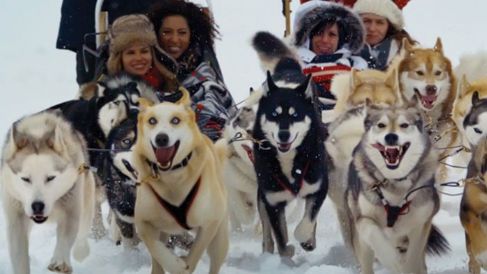 Incentive travel destinations - dog sleds